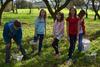 BILD: Äpfelklauben im Stiftsgarten